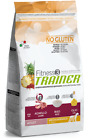 Trainer Pienso Fitness 3