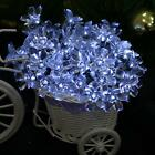 Peach Fairy LED String Lights Curtain Lights Holiday Xmas Wedding Decor