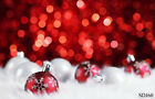 US Stock 10X10FT 5X7FT Christmas Vinyl Backdrop Background Photo Props Scenery