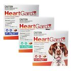 HEARTGARD-30 PLUS for Dogs - Worming Treatment 6 Chewables
