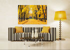 3D Yellow woods, fallen leaves  Wall Stickers Vinyl Wall Murals Print AJSTORE US