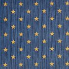 Curtain Call Navy Indoor 26 oz Stainmaster Nylon Cut Pile Area Rug