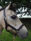 QUALITY SOFT PADDED LEATHER HEADCOLLAR - SMALL PONY and PONY SIZE - DARK BROWN