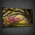 CHARLESTON PLANTATION COLOURFUL FLOWERS BOX CANVAS PRINT WALL ART PICTURE