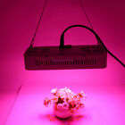 600W 60LED Grow Light Plant Lamp for Hydroponic Plant Growing  Double Chips
