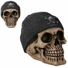 Skull Money Savings Bank With Fishermans Hat !!          Brand New !!