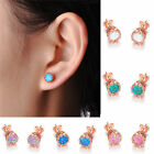 Fashion Crown-Shape 5 Colors Opal Earring Rose Gold Filled Women Wedding Jewelry
