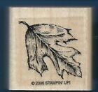 OAK TREE LEAF background Natural Nature Stampin Up! 2006 small wood RUBBER STAMP