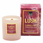 NEW Flamingo Fling Lush Candle Salt & Pepper Candles & Diffusers