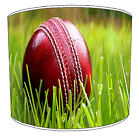 Test Cricket Lampshades Ideal To Match Twenty20 Test Cricket Cushion Covers.