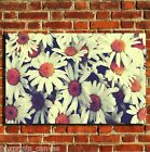 RETRO DAISYS BEDROON CANVAS WALL POP ART BOX PRINT PICTURE SMALL/MEDIUM/LARGE