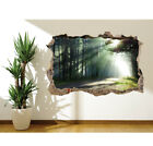 Sunlit Road Through The Woods Wall Sticker Photo Wall Mural (1337828) Forest
