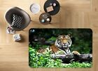 3D Handsome Tiger 3121 Non Slip Rug Mat Room Mat Quality Elegant Photo Carpet AU