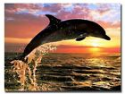 5D DIY Diamond Painting Dolphin, Full Cover, Square Tile #04