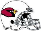 Arizona Cardinals Helmet NFL Vinyl Decal / Sticker Sizes Free Shipping $24.99 USD on eBay