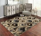 Contemporary Area Rugs for Living Room 8x10 Floral Rug 5x7