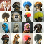 Fancy Synthetic Pet wig Lovely Dog Cat wig Supplier Costume Accessory Small Size