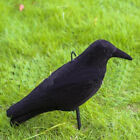 5PCS Garden Flocked Artificial PE Jet Black Crow Decoy for Hunting Shooting LOTDecoys - 36249