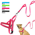 Reflective No Pull Dog Harness & Dog Leash with Two Handles for Pit Bull XXS-L