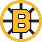 Boston Bruins Reto NHL Color Die Cut Vinyl Decal Sticker - You Choose Size $2.34 USD on eBay