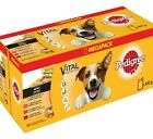 MIXED CHUNKS IN GRAVY - 100g (x12 / x40) - Pedigree Pouches Dog Food bp Pet Meal