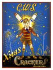 8089.Decoration Poster.Home Room wall art design.Fire crackers.Firecrackers ad