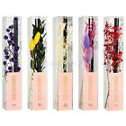 MUMCHIT Gardening Essential Oil Fragrance Diffuser Reed Stick Replacement Refill