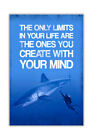 Limits In Your Life Shark and Diver Poster Wall Art Prints House Decor Pictures