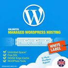 3 Year WordPress Website + 100% SSD Fastest Hosting Unlimited Bandwidth Free SSL