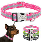 Personalised Dog Collar Engraved ID Tag Reflective Small Large Nylon for Pitbull