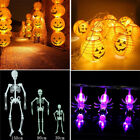 Halloween Led Lights Pumpkin Lantern Spider Battery Powerd Scary Room Decoration