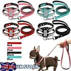 Pet Supplies Dog Harness Leash Set Suede Leather Rhinestone Walking Leads S-L