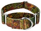 Country Brook Petz® 1 1/2 Inch Southern Forest Camo Martingale Dog Collar