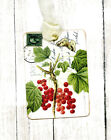 Hang Tags RED CURRENT BERRY POSTCARD TAGS or MAGNET 711 Gift Tags