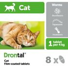BAYER Dewormer Treatment for Cats Kittens Round Tape Hook Worms 4/8/12/16 Tablet