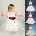 Tulle Dress Petals Wedding Flower Girl Bridesmaid Party Occasion Age 2-10 yr 061