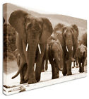 Elephant Family - Canvas Wall Art Pictures For Home Interiors