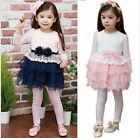 Long Sleeve Kids Girls Beauty Flower Clothing Tulle Princess Tutu Dress 2-7Y