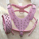 Pink Leather Spikes Studded Dog Harness&Collar Set Pit Bull Dog Harness Collars