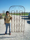 Really BIG Garden Trellis for a  Large Screen for Flowers or Privacy