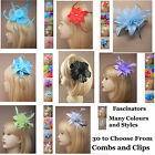 Flower Fascinator Hair Clips Comb Beads Feather Wedding Prom Ascot Races