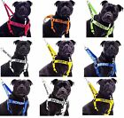Super Strong Staffordshire Bull Terrier Dogs Nylon L-XL Non-Pull Strap Harness