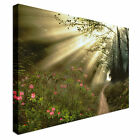 Landscape art mystical garden path Canvas Wall Art Print Large + Any Size