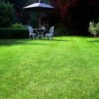 SLOW GROWING GRASS LAWN SEED VERY LOW MAINTENANCE & LOWER WASTE CHOICE OF SIZES