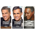 JUST FOR MEN Touch of Gray Hair Color Treatment - 3 Colors