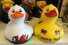Welsh rubber duck bath fun Red Dragon Flag Yellow Cymru Wales Rugby Football bn