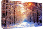 Snow Winter Landscape Scene  Canvas Wall Art Picture  - All sizes & colours