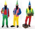 Adult Christmas Panto Pantomime Garden Gnome 7 Dwarfs Elf Fancy Dress Costume
