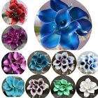 9pcs Real Touch PU Calla lily Wedding Bridal Bouquet Home Party Decor Flower