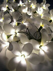 35 FLOWER PREMIUM HOME FLORAL DECOR STRING LAMP LIGHTS - CHOICE OF: **6 COLORS**